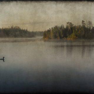 Cherokee Lake 4