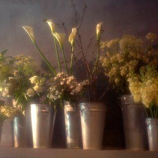 Brugge Flowers